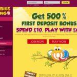 Discount Newbies Bingo