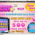 Joining Zingo Bingo Bonus
