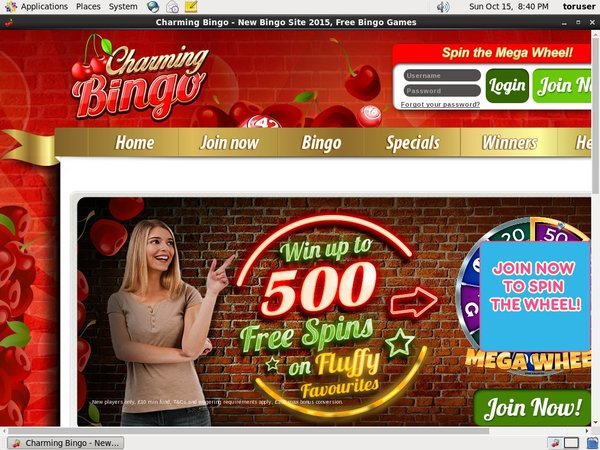 Charming Bingo Moneybookers