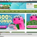 Dino Bingo Ecopayz