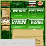 Download Bingo Bongo App