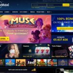 Casino Maxi Promotions Vip